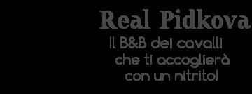 BB Real Pidkova